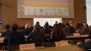 Der Internationale Tag des Friedens bei den UN in Genf: Wie sich verfolgte, neue Religionen für weltweite Harmonie und Gerechtigkeit einsetzen